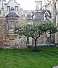 Apple хочет открыть исследовательский центр в Кембридже