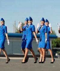 United Airlines купила для своих стюардесс 23 тысячи iPhone 6 Plus