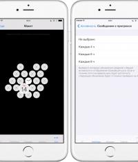 Приложение для Apple Watch рассказало все об этих часах