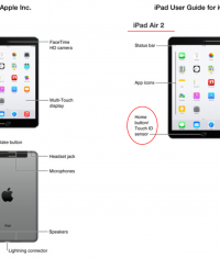 Apple случайно рассекретила iPad mini 3 и iPad Air 2 перед анонсом