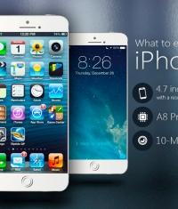 Голландский оператор рассказал о дате начала продаж iPhone 6