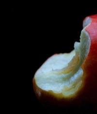 Российскую компанию оштрафовали за использование «надкушенного яблока с двух сторон»